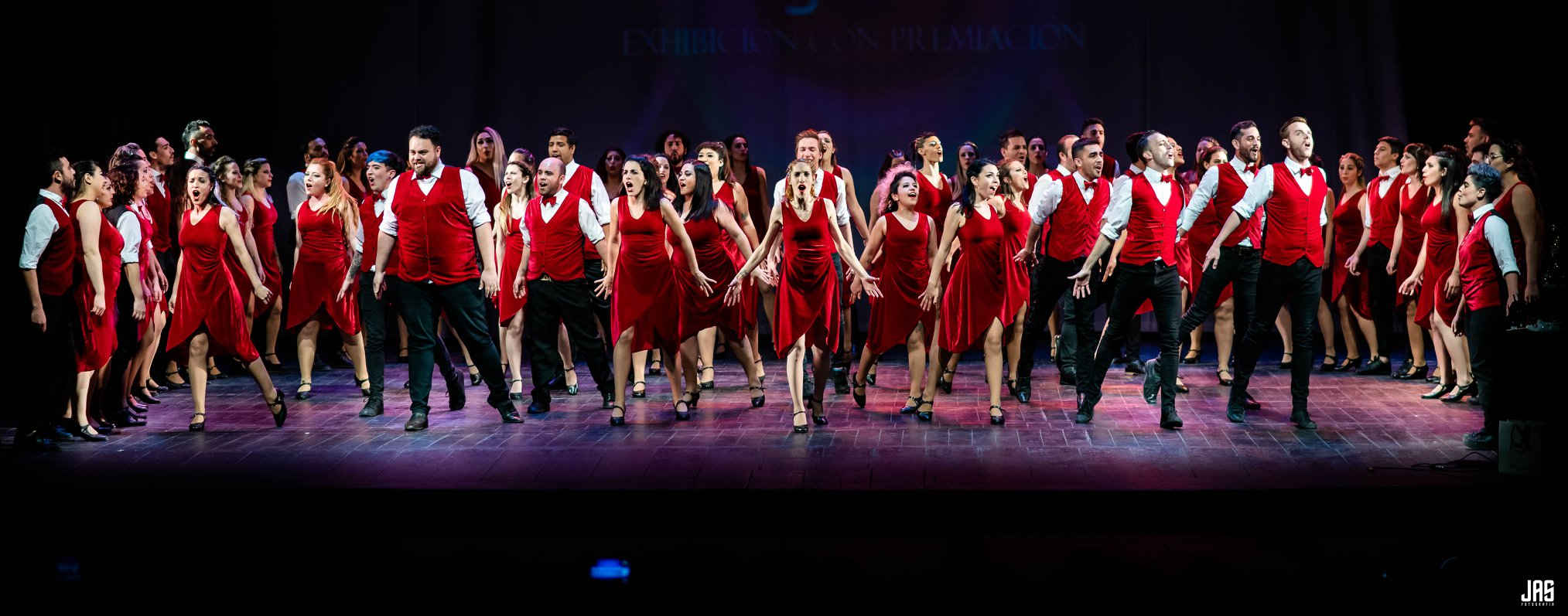 """""""VOZ EN ACCIÓN"""": mucho más que un coro que baila"""
